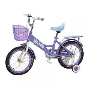 Angel-Purple-1.jpg